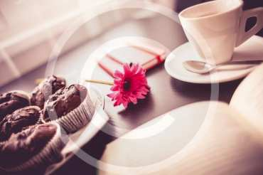 Choco Crisp & Mint Delight